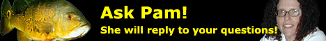 Ask Pam all your cichlid questions!