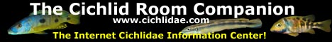 The Internet Cichlidae Information Center