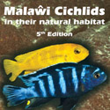 The ultimate guide of Lake Malawi cichlids