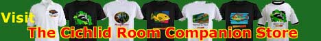 Get beautiful and exclusive cichlid t-shirts and support the Cichlid Room Companion!
